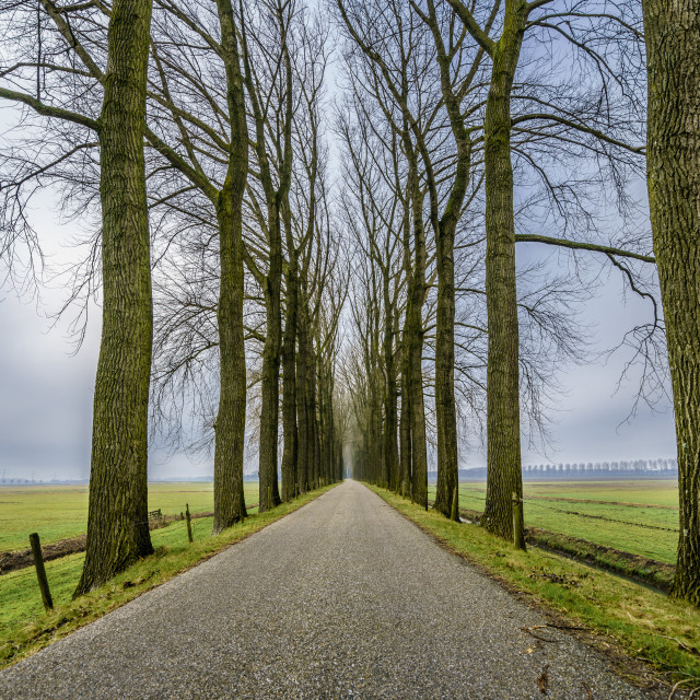 """""""Endless road one"""" stock image"""