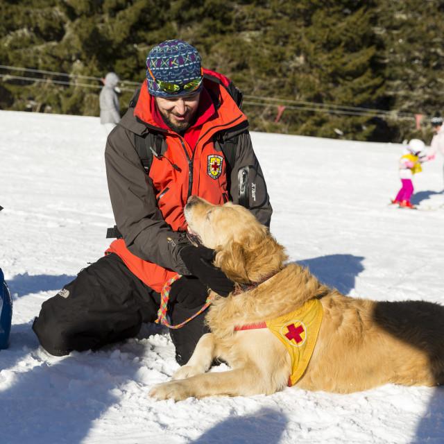 """Red cross savior with his dog"" stock image"