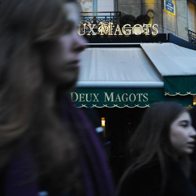 """""""Les Deux Magots"""" stock image"""