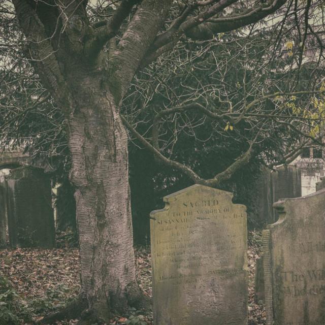 """""""Old Gravestones"""" stock image"""