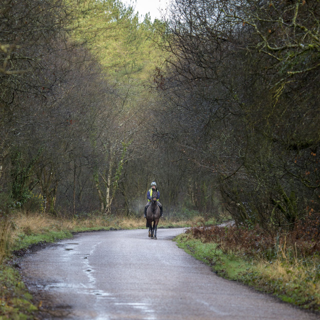 """""""Going for a Ride in country lanes"""" stock image"""