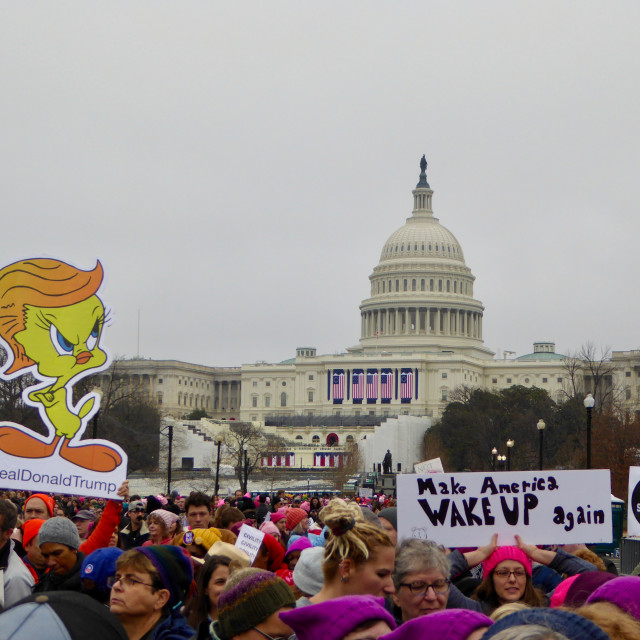 """Women's March DC Capitol"" stock image"