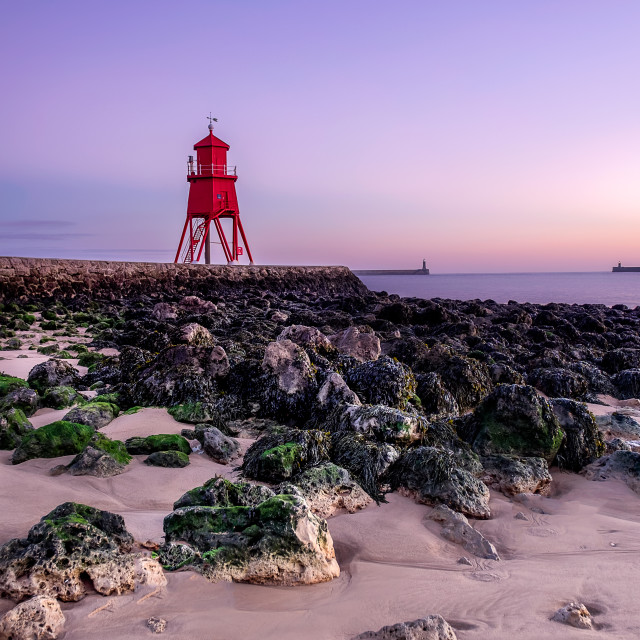 """Herd Groyne South Shields"" stock image"