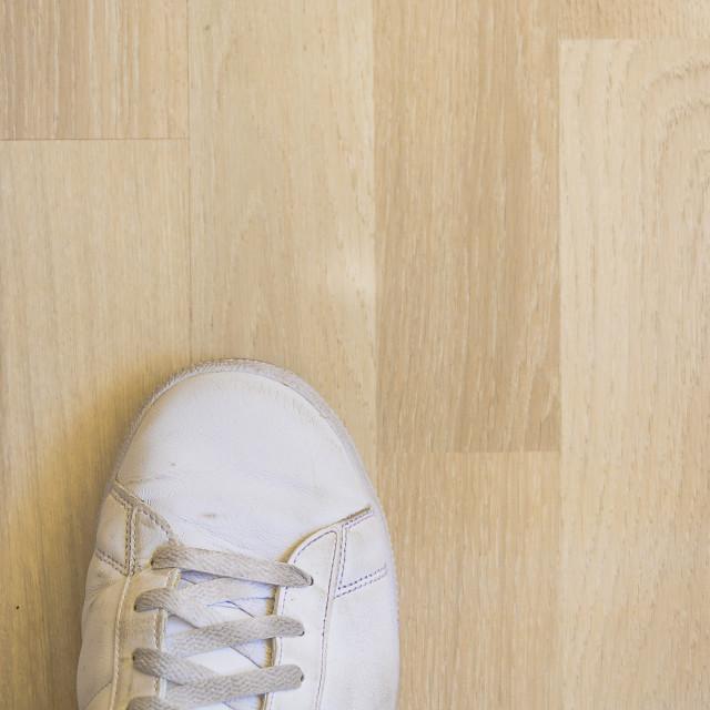 """""""White sneaker shoe on wooden floor"""" stock image"""