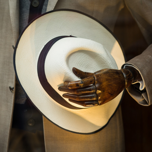 """""""Mannequin hand holding a hat"""" stock image"""
