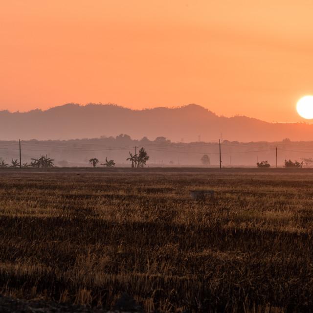 """Morning Light"" stock image"