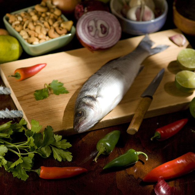 """sea bass"" stock image"