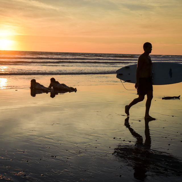 """Surfer Sunset"" stock image"