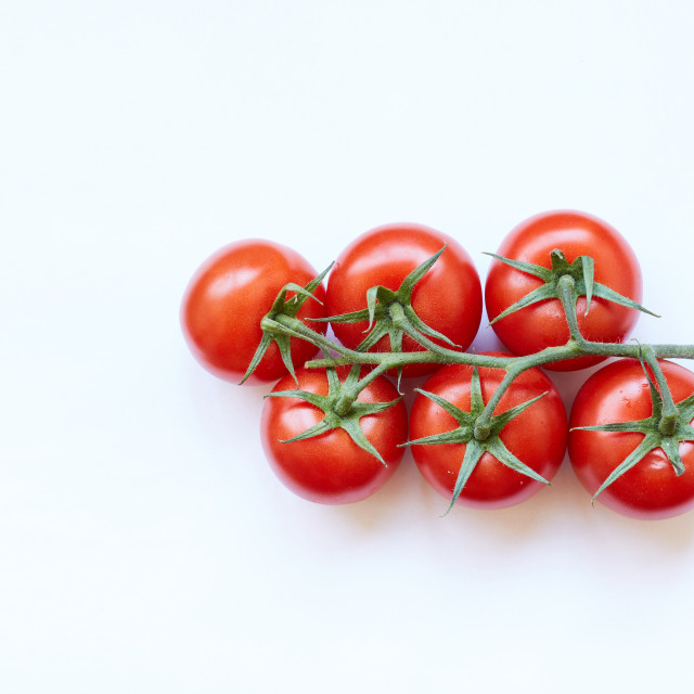 """Fresh cherry tomatoes isolated on white background"" stock image"