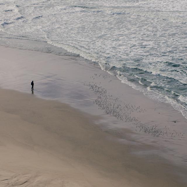 """ocean daydreaming"" stock image"