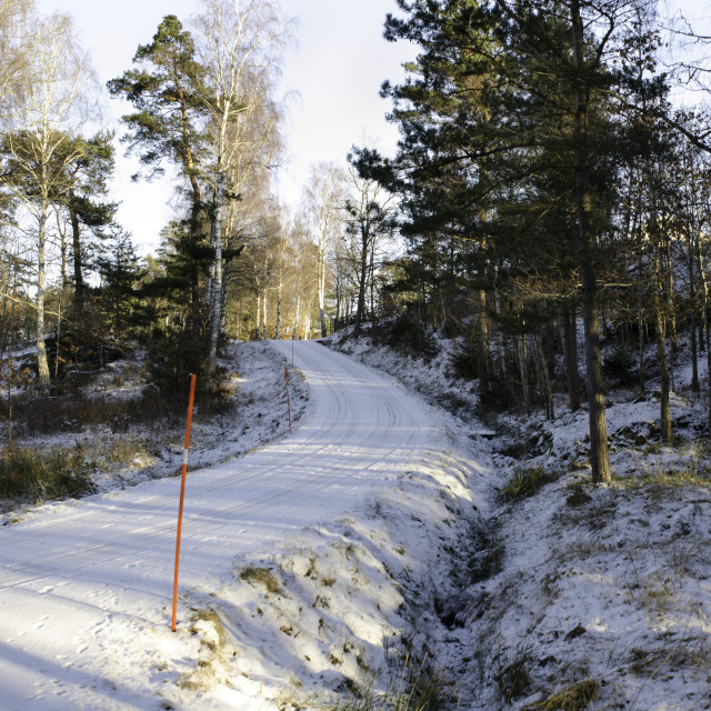"""one road in sweden with snow"" stock image"