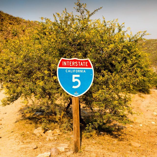 """California interstate 5 traffic sign in front of desert thorn tree with..."" stock image"