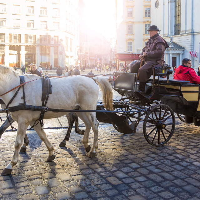 """Riding carriage horses in Vienna street"" stock image"