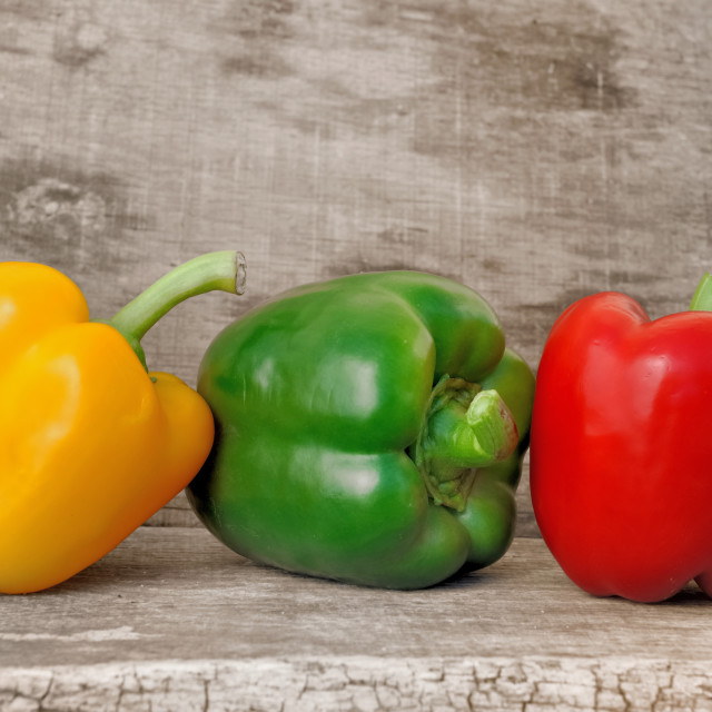 """""""lined of colorful peppers"""" stock image"""