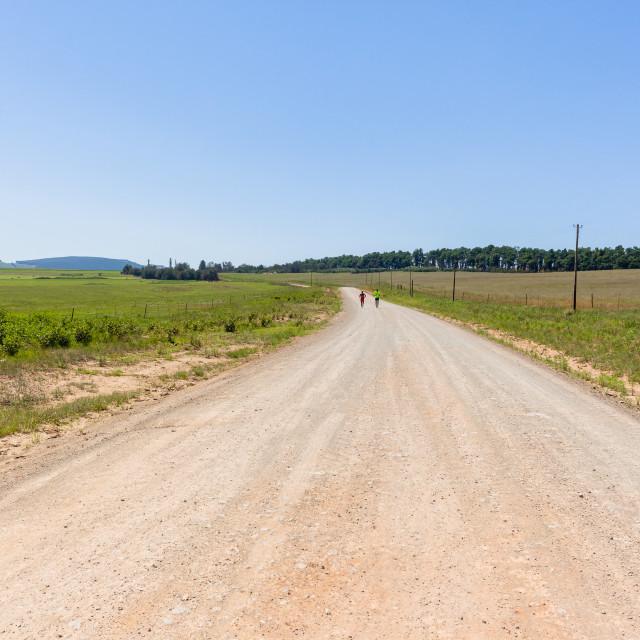 """Marathon Runners Farmlands"" stock image"