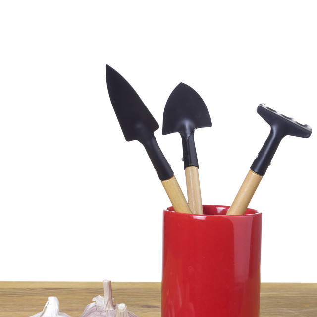 """""""Set of garden tools in a glass pen"""" stock image"""