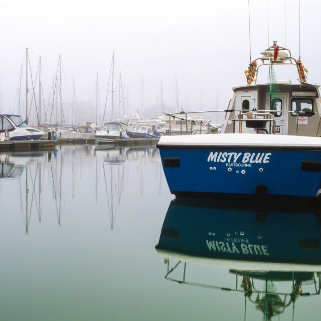 """Misty Blue"" stock image"