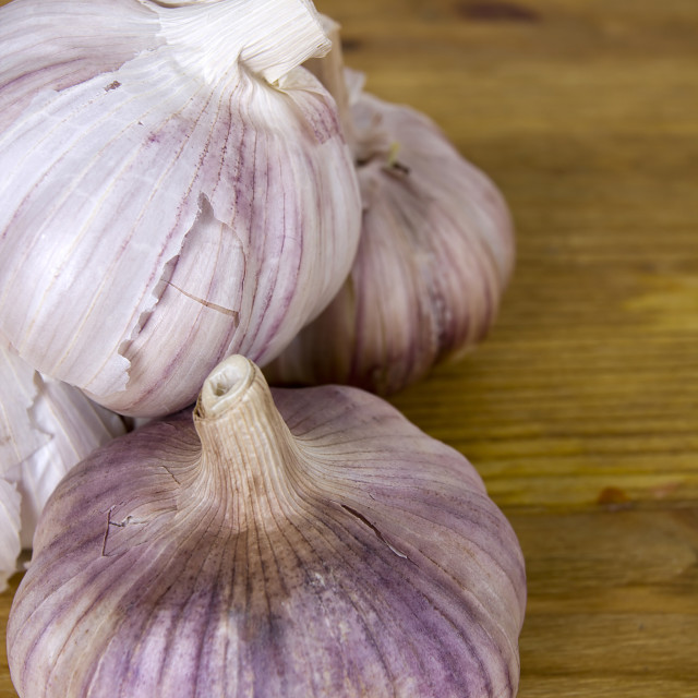"""""""Several heads of garlic"""" stock image"""