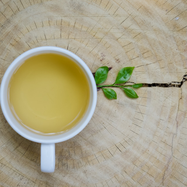 """A cup of tea with young green leaf on wooden plate"" stock image"