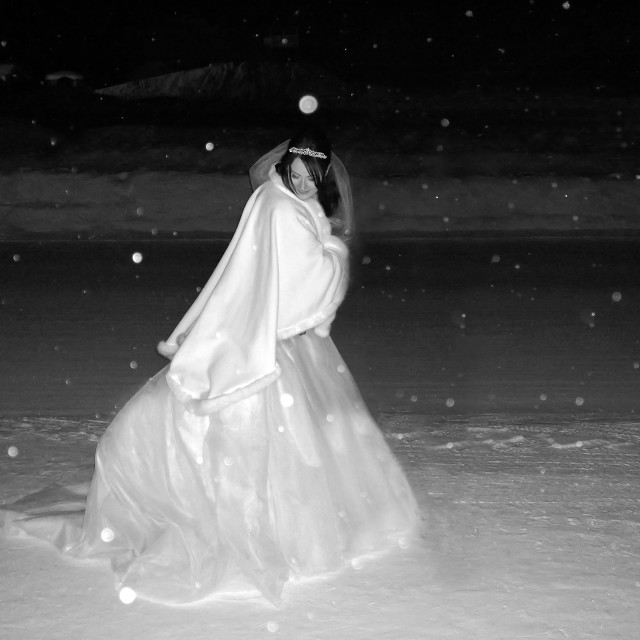 """Snow Bride"" stock image"