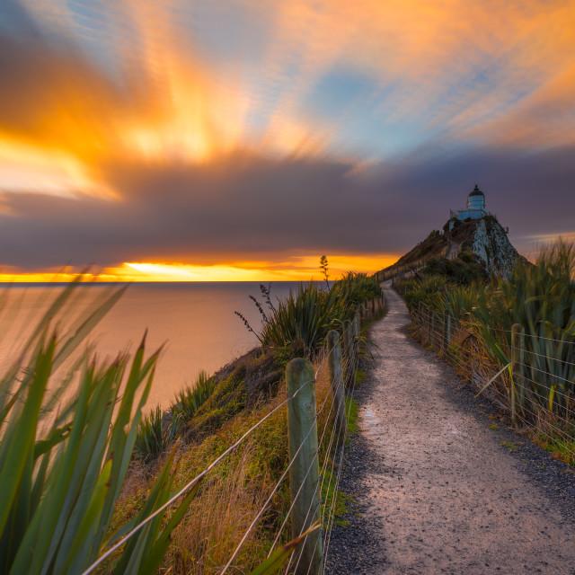 """Sunrise at Nugget Point Lighthouse"" stock image"
