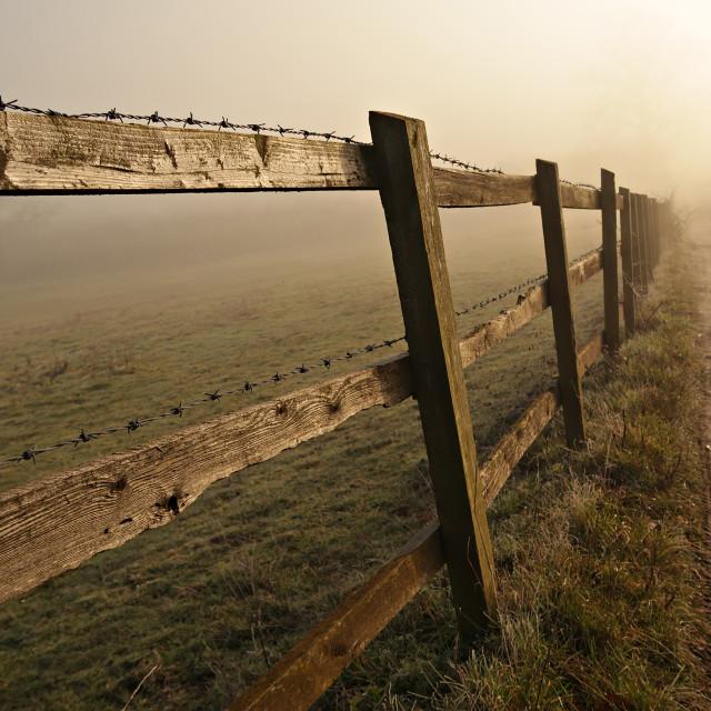 """""""Fence on misty morning."""" stock image"""