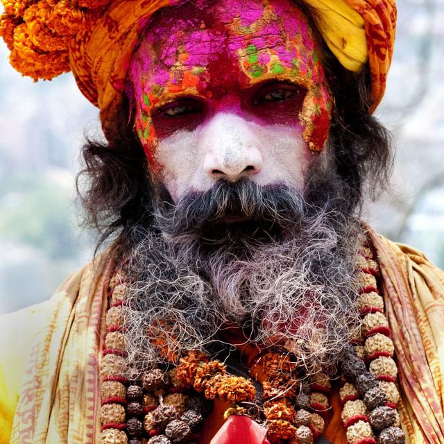 """""""Hindu Sadhu"""" stock image"""