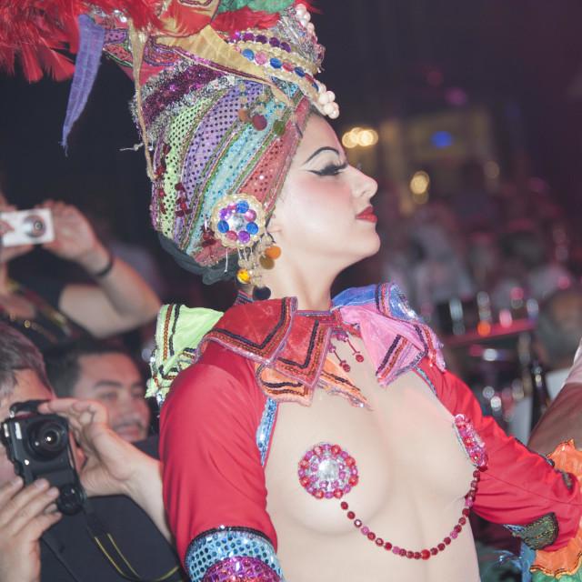 """Tropicana Dancer With Paparazzi"" stock image"