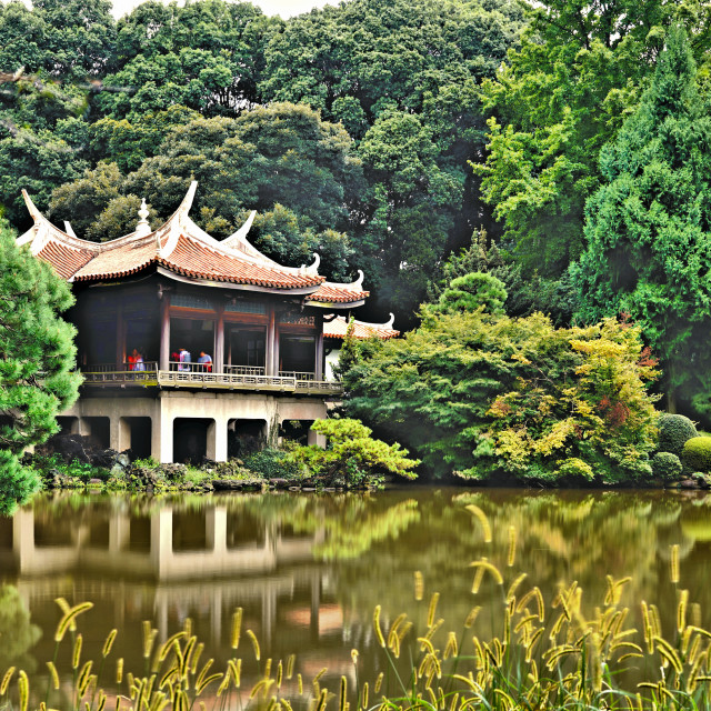 """Pagoda in Shinjuku Garden"" stock image"