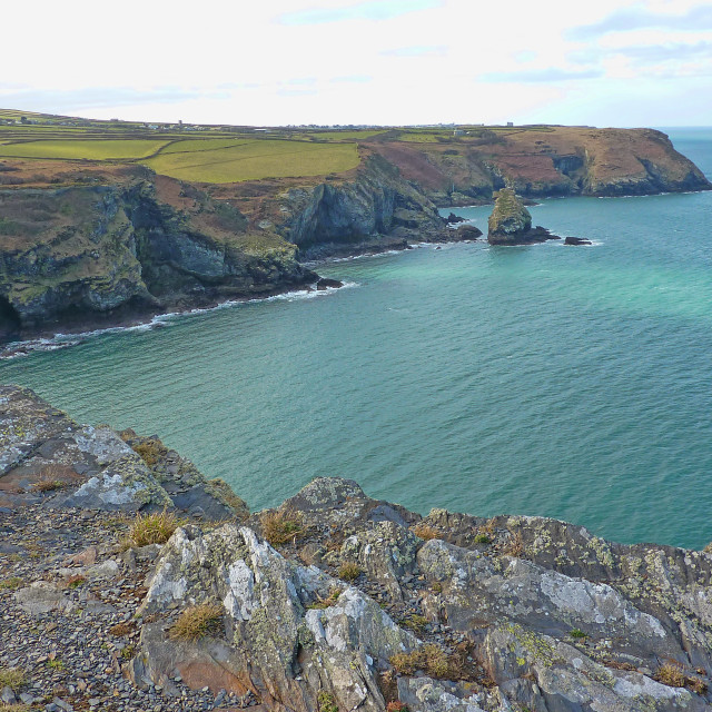 """Coast near Boscastle"" stock image"