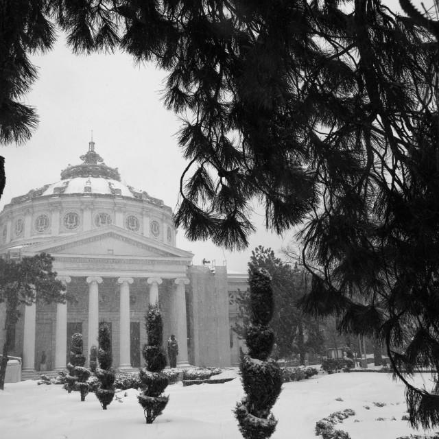 """The Romanian Atheneum"" stock image"