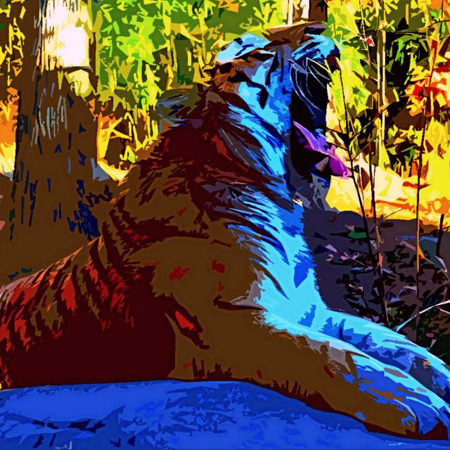 """""""Yawning Tiger"""" stock image"""