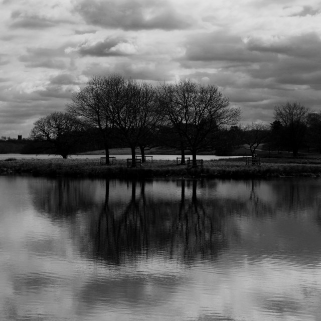 """Tatton Park Mere Reflection"" stock image"