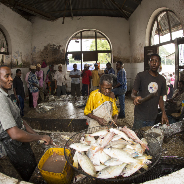 """""""Editorial use only. Unkwon man cutting a fish on his market. People in Africa..."""" stock image"""