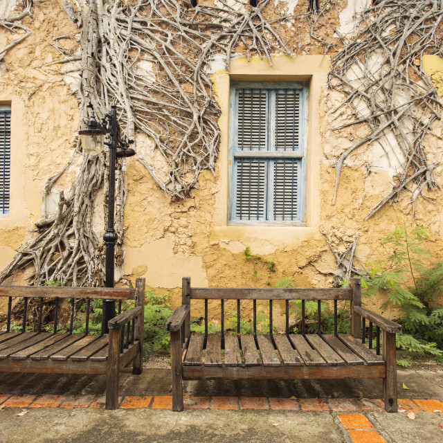 """Two bench and background with old house and tree on it"" stock image"
