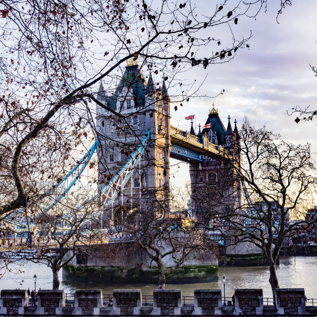"""Tower Bridge Through the Trees"" stock image"