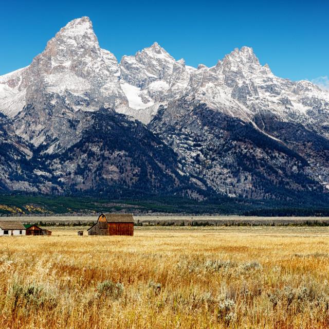 """View of Grand Teton Peaks"" stock image"
