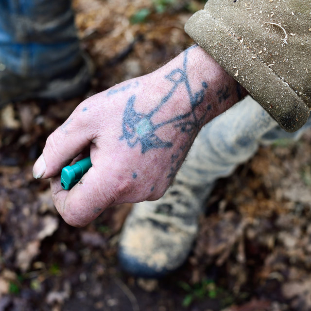 """Working Hands."" stock image"
