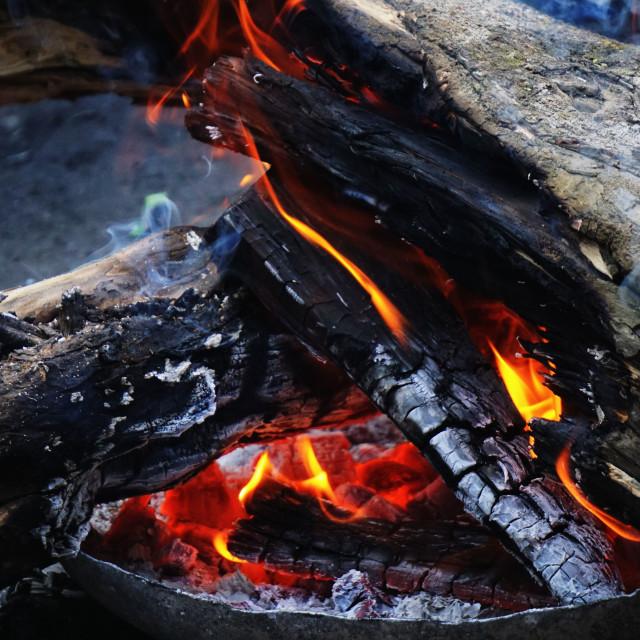 """Bonfire"" stock image"