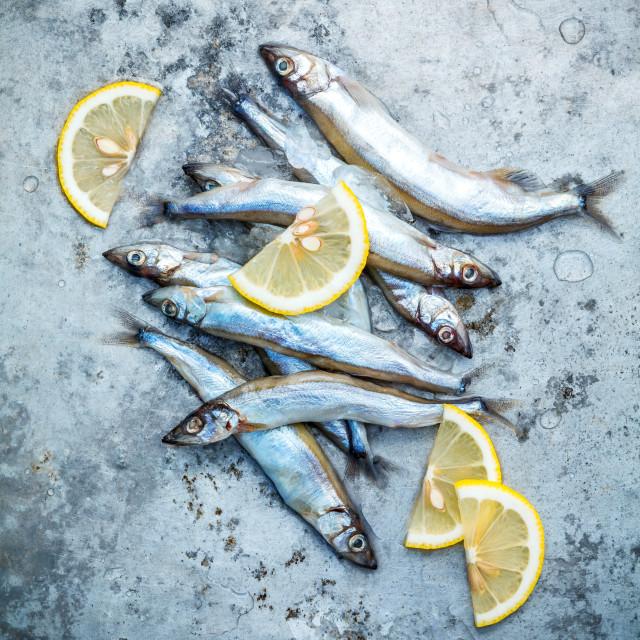 """Fresh catch Shishamo fish fully eggs flat lay on shabby metal background...."" stock image"