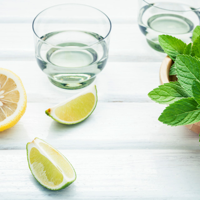 """""""Ingredients for making mojitos mint leaves, lime,lemon and vodka on white..."""" stock image"""