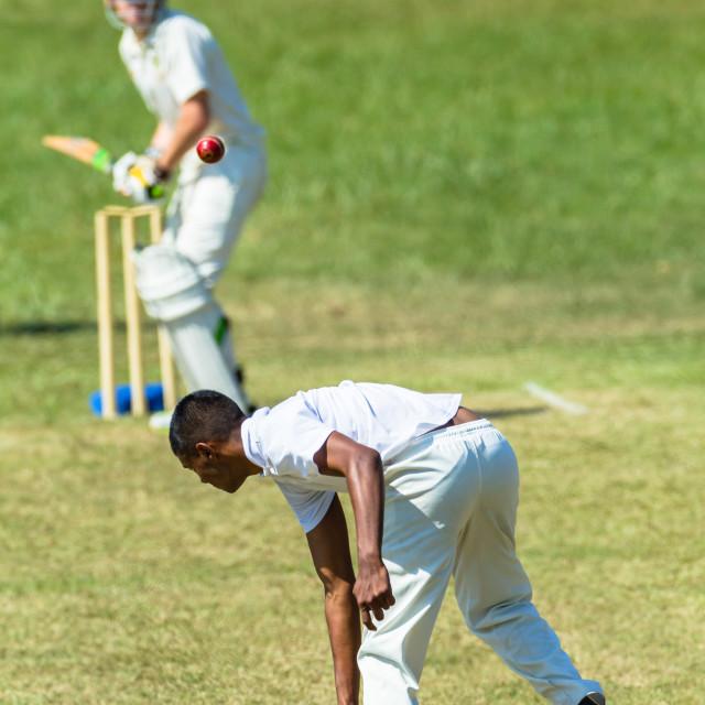 """Cricket Game Action Bowler Batsman"" stock image"