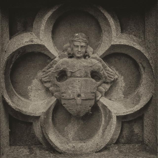 """""""Stone relief"""" stock image"""