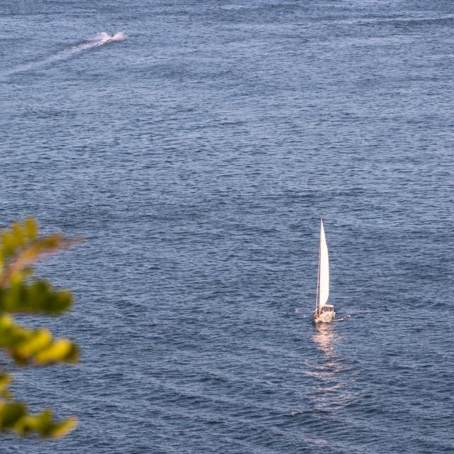 """The sailing boat"" stock image"