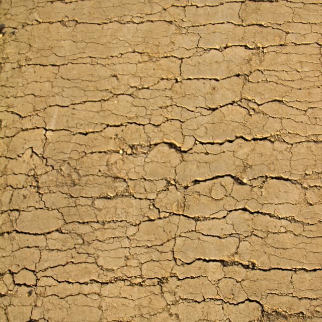 """""""Tuscany ground"""" stock image"""