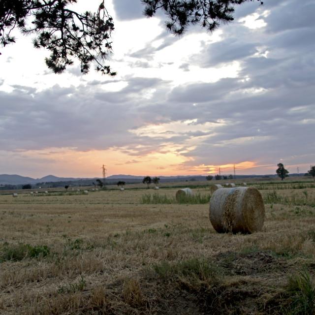 """""""Tuscany sunset scenary"""" stock image"""