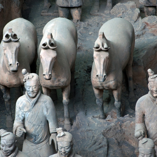 """Terracotta Warriors & horses"" stock image"
