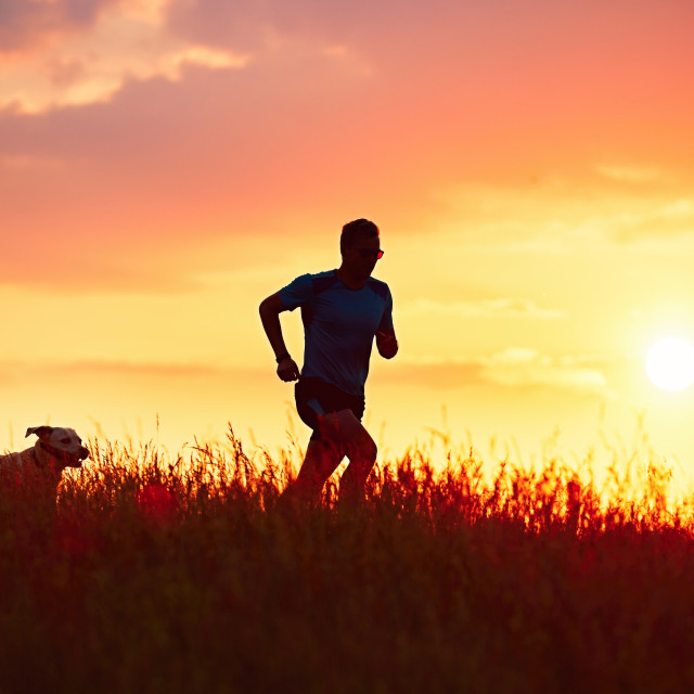 """Athletic runner with dog at the sunset"" stock image"