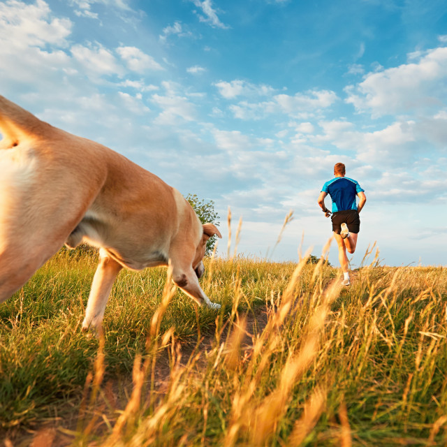 """Sport lifestyle with dog."" stock image"