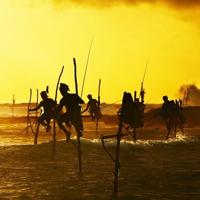 """""""Stilt fishing"""" stock image"""